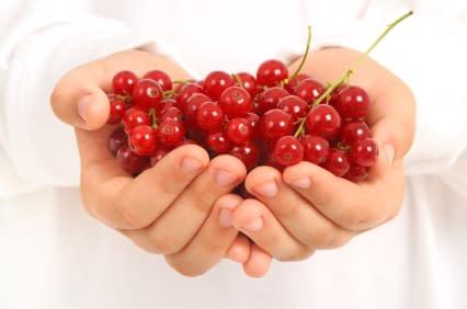 hands full of fruit